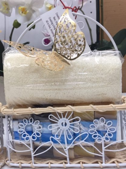 Shampoo-bar-travel-size-5-scents-gift-set